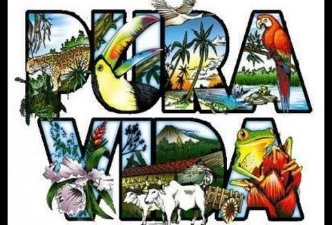 Enjoy wonders of Costa Rica